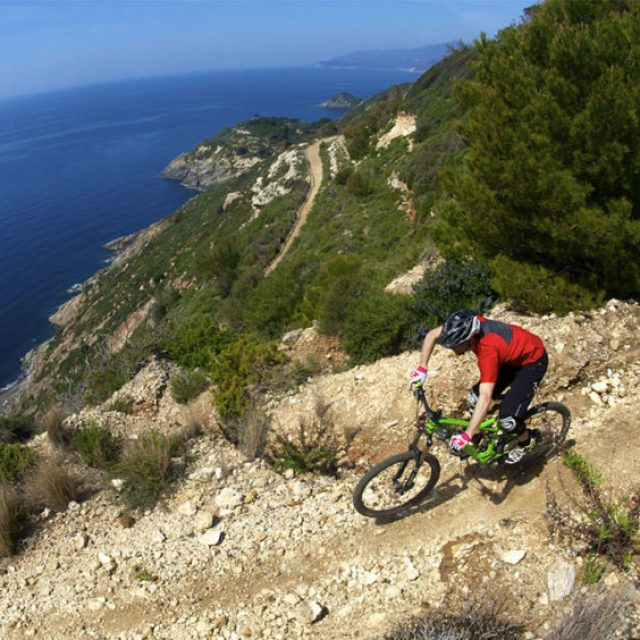 Elba in bici: itinerari e servizi bike friendly